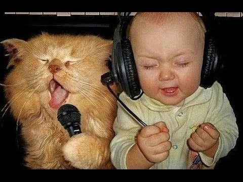 Funny baby Funny Videos Funny CatsFunny Babies Laughing Compilation 2015