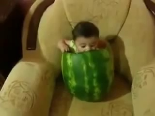 Funny Baby Videos – Baby Eating Watermelon – Cute Baby Eats A Melon